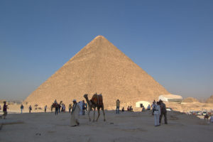 Pyramid of Cheops & camel